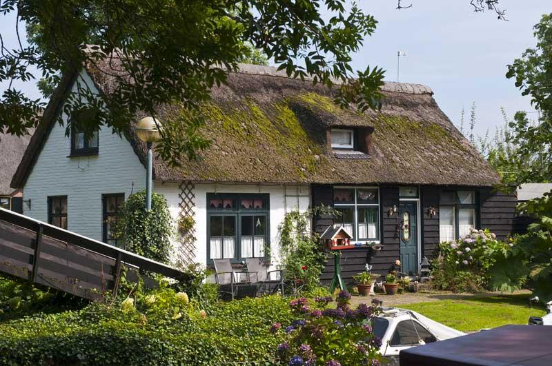 Ein ferienhaus in holland mit hund mieten ferienhaus holland for Ferienhaus juist mit hund